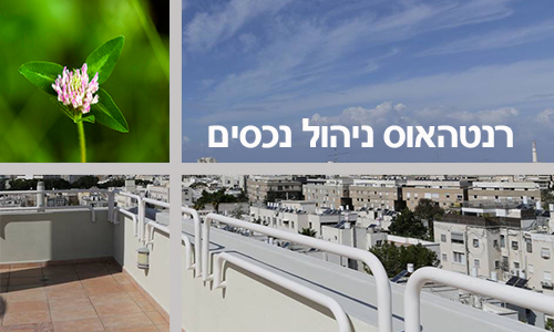 PROPERTY MANAGEMENT IN ISRAEL